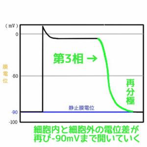 活動電位と静止膜電位